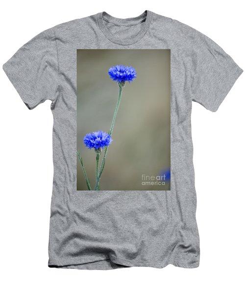 More Bachelors Buttons Men's T-Shirt (Athletic Fit)