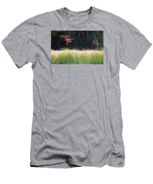 Morning Melody On Hopkins Stream Men's T-Shirt (Slim Fit) by Joy Nichols
