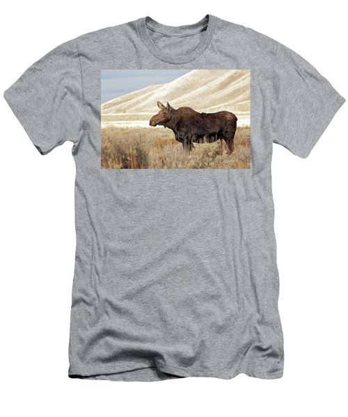 Morning Moose Men's T-Shirt (Athletic Fit)