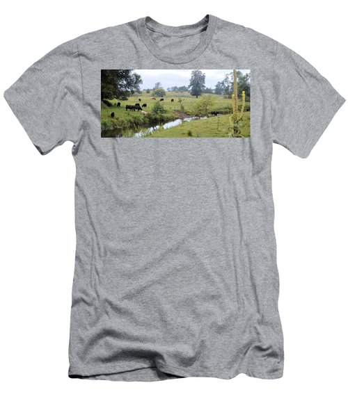 Morning On Coldwater Men's T-Shirt (Athletic Fit)