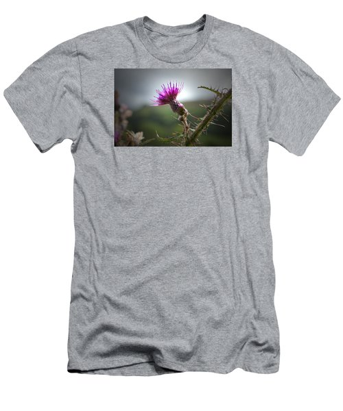 Morning Purple Thistle. Men's T-Shirt (Athletic Fit)