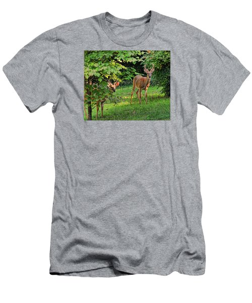 Morning Visitors Men's T-Shirt (Slim Fit) by Rick Friedle