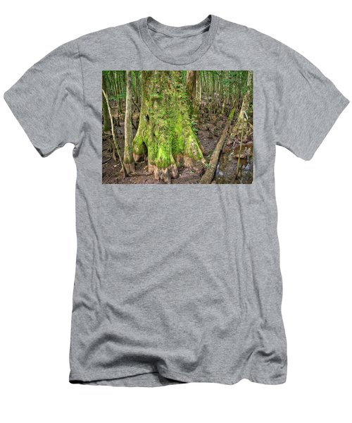 Mossy Cypress Men's T-Shirt (Athletic Fit)