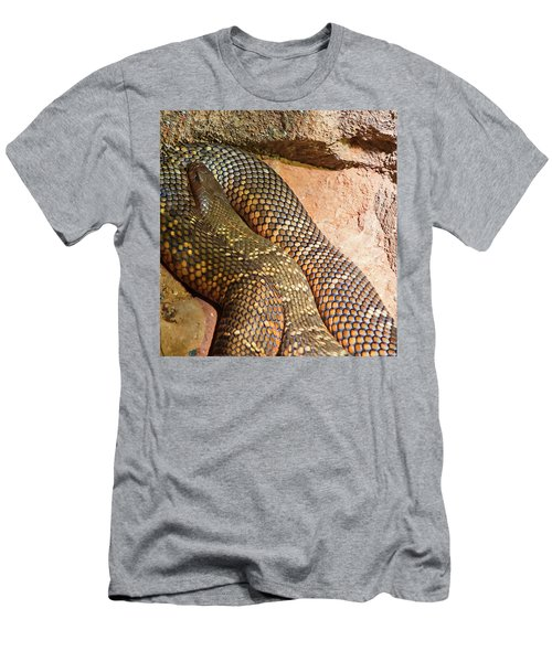 Men's T-Shirt (Athletic Fit) featuring the photograph Most Venomous Snake  by Miroslava Jurcik