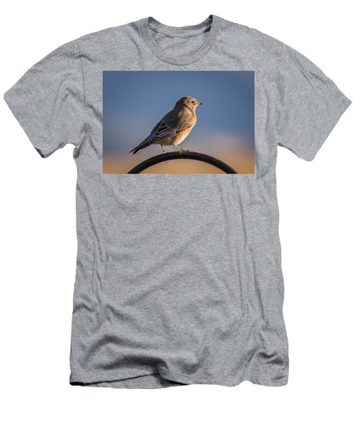 Mountain Bluebird At Sunset Men's T-Shirt (Athletic Fit)
