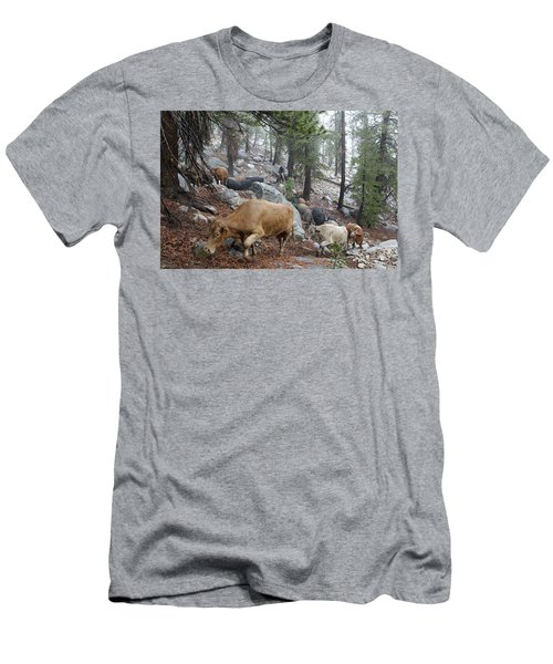 Mountain Climbing Men's T-Shirt (Athletic Fit)