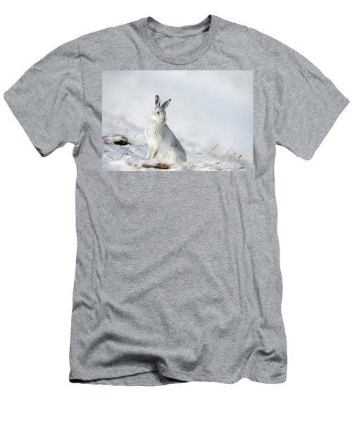 Mountain Hare Sitting In Snow Men's T-Shirt (Athletic Fit)