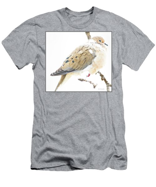 Mourning Dove, Snowy Morning Men's T-Shirt (Athletic Fit)