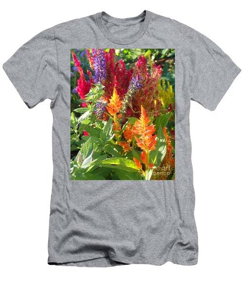 Multi-color Energy Men's T-Shirt (Athletic Fit)