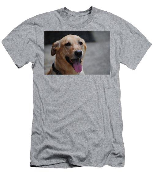 My Dog Ubu Men's T-Shirt (Athletic Fit)