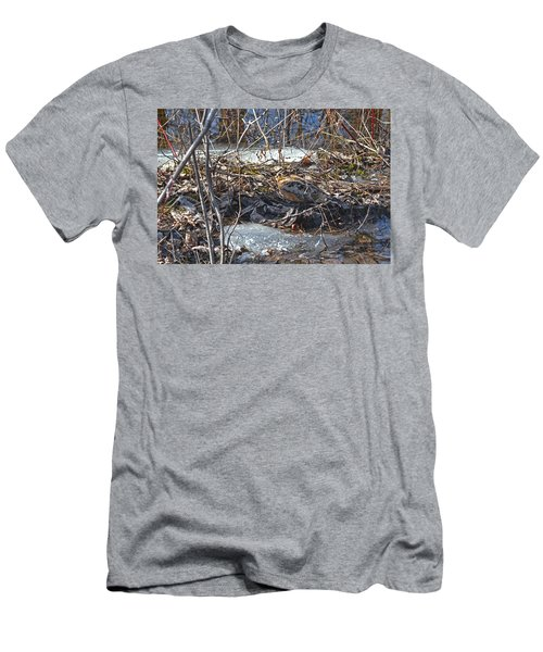 My Easter Woodcock Men's T-Shirt (Athletic Fit)