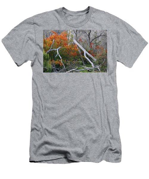 Mystical Woodland Men's T-Shirt (Athletic Fit)