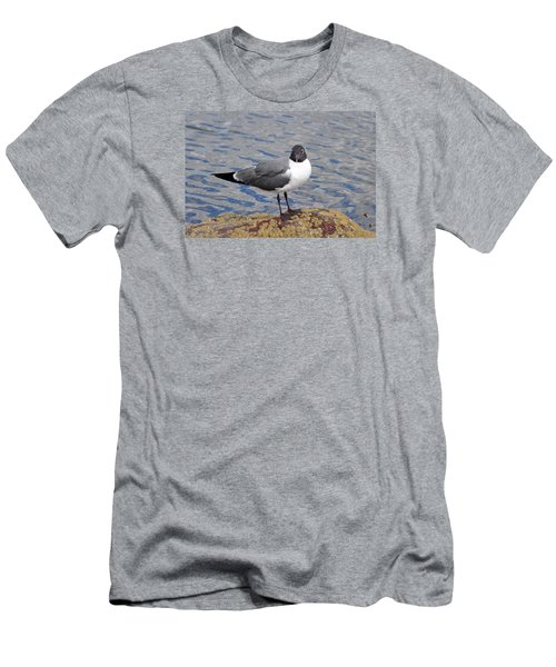 Men's T-Shirt (Slim Fit) featuring the photograph Bird by Glenn Gordon