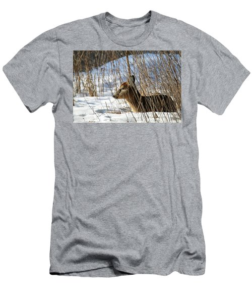 Napping Fawn Men's T-Shirt (Slim Fit) by Brook Burling
