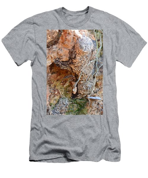Natural Abstract 15-03 Men's T-Shirt (Athletic Fit)