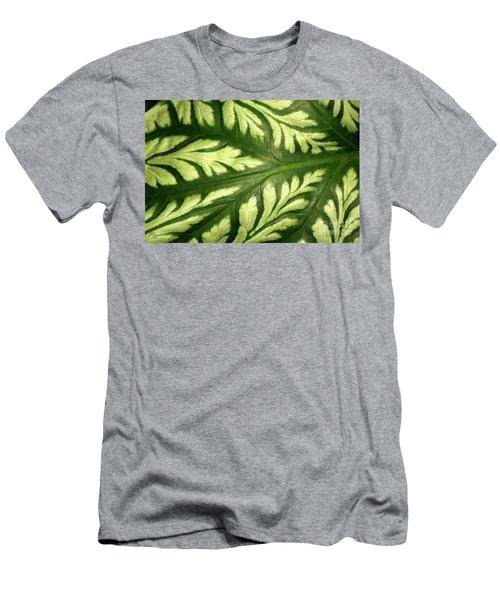 Nature's Design Men's T-Shirt (Slim Fit) by Mariarosa Rockefeller