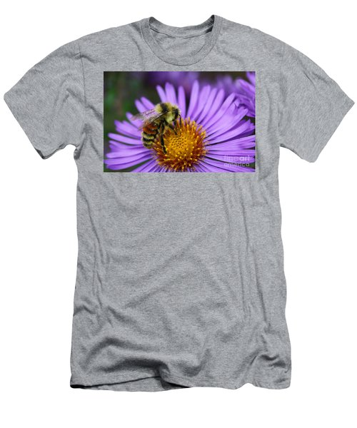 New England Aster And Bee Men's T-Shirt (Slim Fit) by Steve Augustin