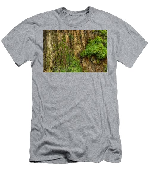 Men's T-Shirt (Slim Fit) featuring the photograph North Side Of The Tree by Mike Eingle