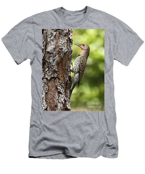 Northern Flicker On The Hunt Men's T-Shirt (Athletic Fit)