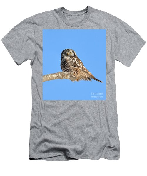Men's T-Shirt (Athletic Fit) featuring the photograph Northern Hawk-owl On Limb by Debbie Stahre
