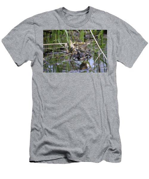 Northern Waterthrush Men's T-Shirt (Slim Fit) by Gary Hall