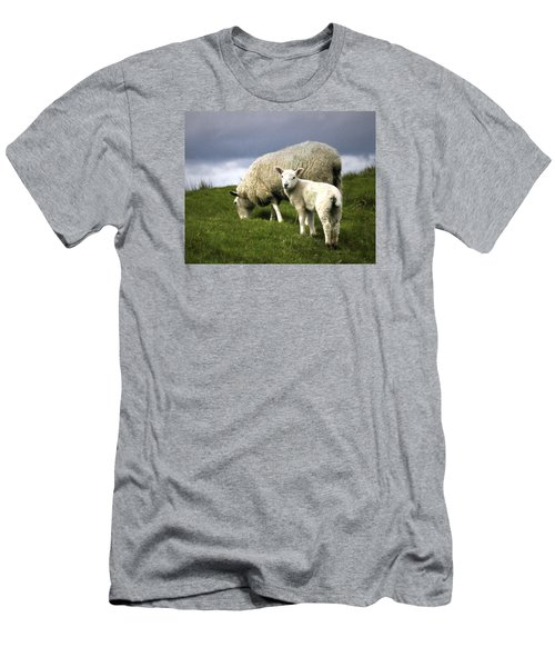 Northumberland Lamb Men's T-Shirt (Athletic Fit)