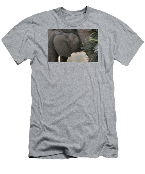 Men's T-Shirt (Slim Fit) featuring the photograph Nursing Elephant Calf by Gary Hall