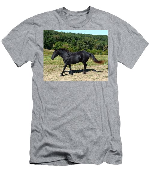 Old Black Horse Running Men's T-Shirt (Athletic Fit)