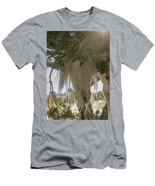 Old Man And The Juniper Men's T-Shirt (Athletic Fit)