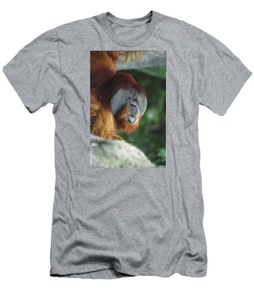 Old Man Of The Forest Men's T-Shirt (Athletic Fit)