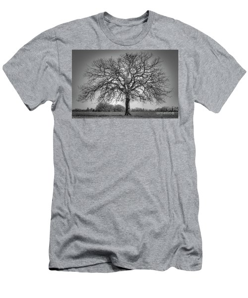 Old Oak Men's T-Shirt (Athletic Fit)