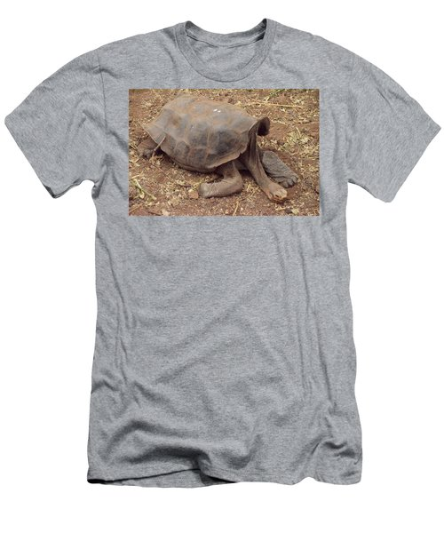 Old Tortoise Men's T-Shirt (Slim Fit) by Will Burlingham