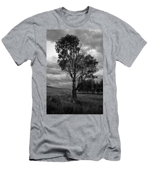 Old Tree, Lost Trail Wildlife Refuge Men's T-Shirt (Athletic Fit)