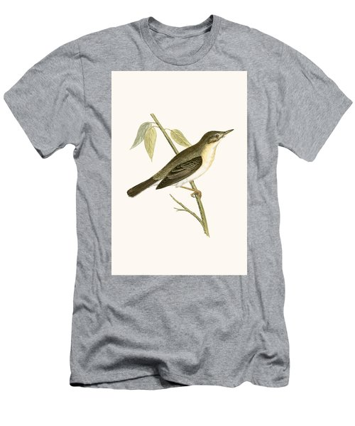 Olivaceous Warbler Men's T-Shirt (Slim Fit) by English School