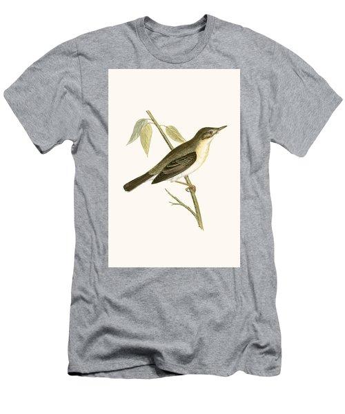 Olivaceous Warbler Men's T-Shirt (Slim Fit)