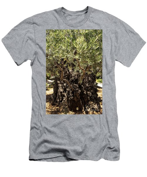 Men's T-Shirt (Athletic Fit) featuring the photograph Olive Tree by Mae Wertz