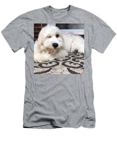 Oliver Wink Men's T-Shirt (Athletic Fit)