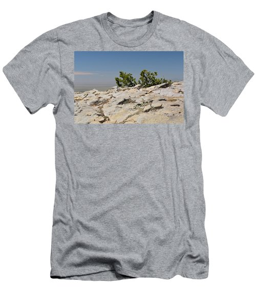 On Top Of Sandia Mountain Men's T-Shirt (Athletic Fit)