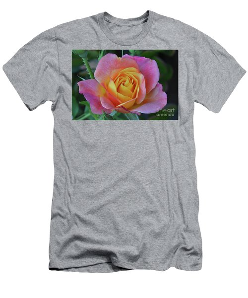 One Of Several Roses Men's T-Shirt (Slim Fit) by Debby Pueschel