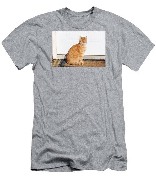 Orange Tabby Cat Men's T-Shirt (Slim Fit) by Jana Russon