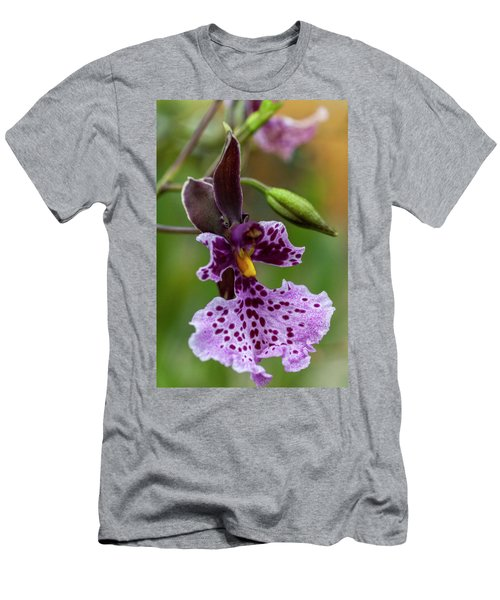 Orchid - Caucaea Rhodosticta Men's T-Shirt (Athletic Fit)
