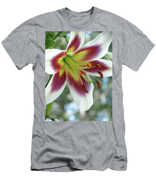 Oriental Lily In Summer Sunset Men's T-Shirt (Slim Fit) by Rebecca Overton