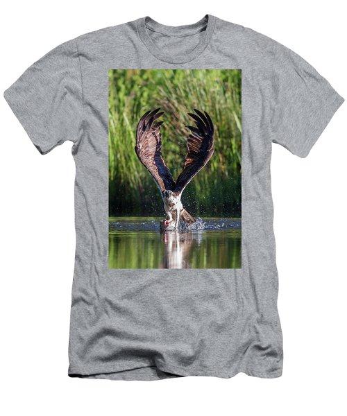 Osprey - Strike Men's T-Shirt (Athletic Fit)