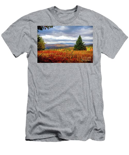 Overlooking The Foothills Men's T-Shirt (Athletic Fit)