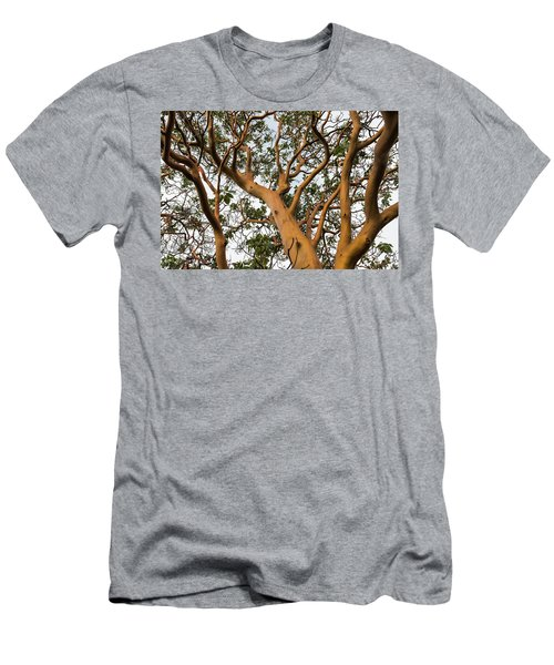 Pacific Madrone Trees Men's T-Shirt (Athletic Fit)