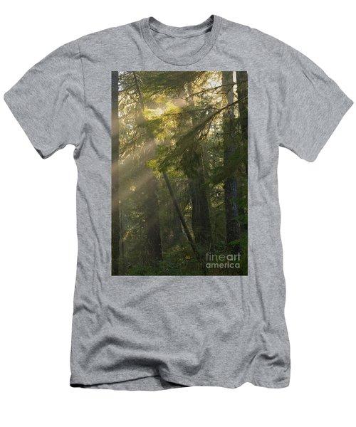 Pacific Rim Misty Sunbeams Men's T-Shirt (Athletic Fit)