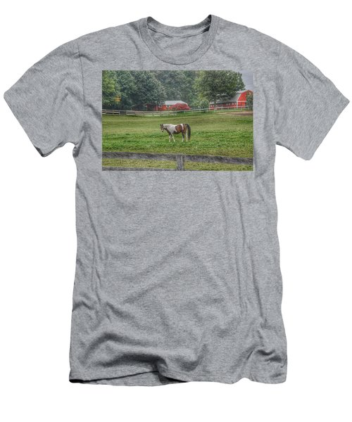 1005 - Painted Pony In Pasture Men's T-Shirt (Athletic Fit)