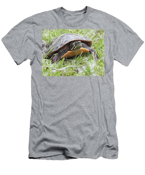 Painted Turtle Men's T-Shirt (Slim Fit) by Betty-Anne McDonald