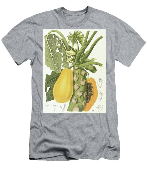 Papaya Men's T-Shirt (Slim Fit) by Berthe Hoola van Nooten