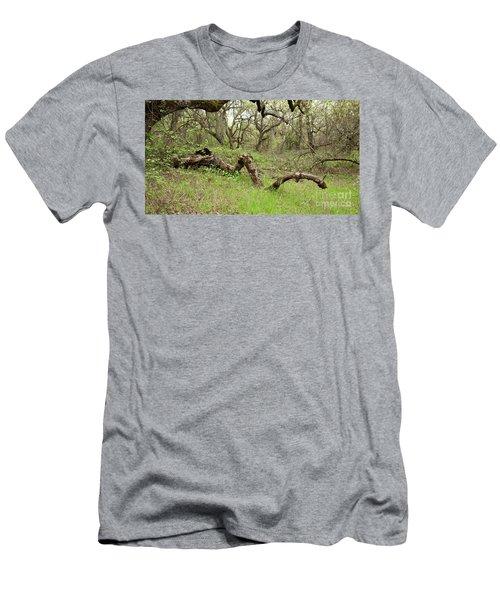 Park Serpent Men's T-Shirt (Slim Fit) by Carol Lynn Coronios